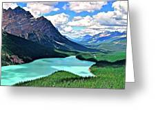 Peyto In August Greeting Card