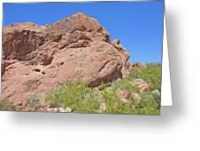 Phoenix Arizona Papago Park  Blue Sky Red Rocks Scrub Vegetation Yellow Flowers 3182019 5340 Greeting Card