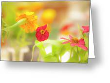 Pick Me Up Flowers Greeting Card