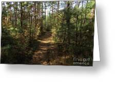 Pijnven Path Greeting Card
