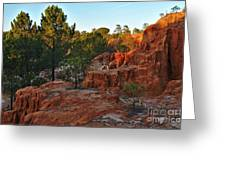 Pine Trees On Red Cliffs Greeting Card