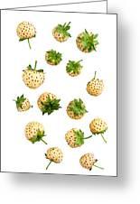 Pineberries Hybrid  Greeting Card