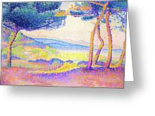 Pines Along The Shore - Digital Remastered Edition Greeting Card