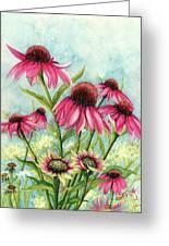 Pink Coneflowers Greeting Card