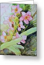 Pink Moth Orchids II Greeting Card
