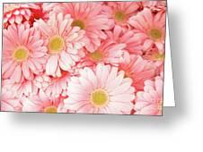Pink Palette Greeting Card