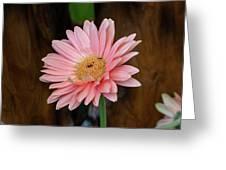 Pink Gerbera Daisy Greeting Card