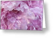 Pinkity Greeting Card
