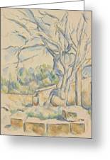 Pistachio Tree At Chateau Noir Greeting Card
