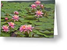Pond Decor Greeting Card