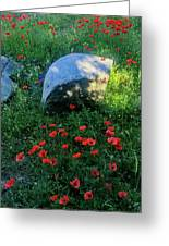 Poppies And Rocks Greeting Card