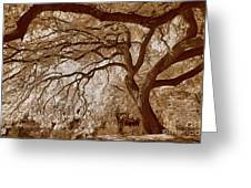 Portrait Of A Tree In Infrared Greeting Card
