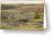 Prairie Edge September Reverie Greeting Card
