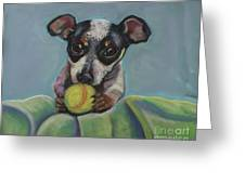 Puppy With Tennis Ball Greeting Card