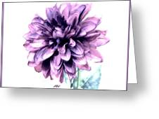 Purple Blend Petals Two Greeting Card