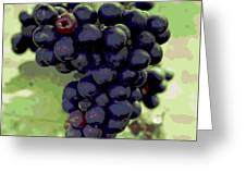 Purple Grape Bunches 19 Greeting Card