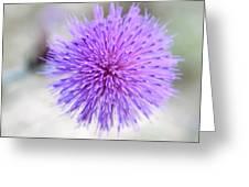 Purple Peace Greeting Card