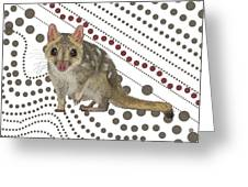 Q Is For Quoll Greeting Card