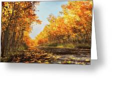 Quiet Time Greeting Card by Rick Furmanek
