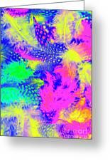 Rainbow Radiance Greeting Card
