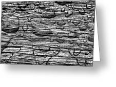 Raindrops On Wood, California, Usa Greeting Card
