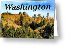 Randle Washington In Fall 02 Greeting Card
