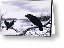 Ravens In Winter Greeting Card