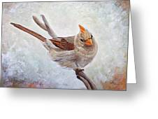 Red Bill Beauty Greeting Card