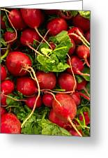Red Radishes Greeting Card
