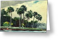 Red Shrt, Homosassa, Florida Greeting Card