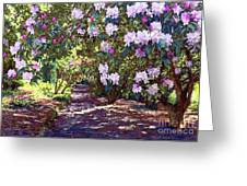 Rhododendron Garden Greeting Card