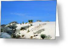 Rippled Sand Dunes In White Sands National Monument, New Mexico - Newm500 00106 Greeting Card