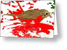 Robin And Snow Greeting Card