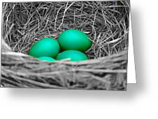 Robin's Nest Selective Greeting Card