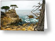 Rocky Cliff And Trees In Carmel Near Greeting Card