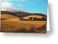 Rolling Hills Of California Greeting Card