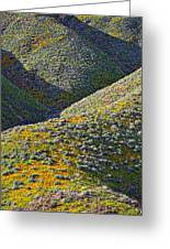 Rolling Hillsides In California - Vertical Greeting Card
