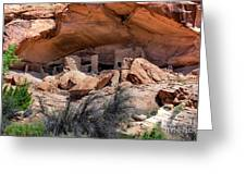 Ruins At Butler On The San Juan River  Greeting Card