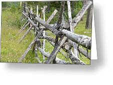 Russel Fence Greeting Card by Ann E Robson