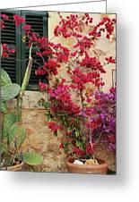 Rustic Life - Flowers Greeting Card