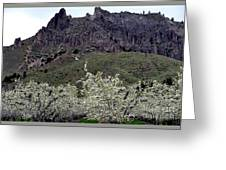 Saddle Rock And Apple Blooms Greeting Card