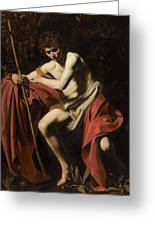 Saint John The Baptist In The Wilderness             Greeting Card