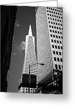San Francisco - Transamerica Pyramid Bw Greeting Card
