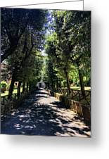 San Paolo Alle Tre Fontane Greeting Card