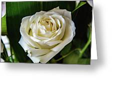 San Stefano Rotondo Greeting Card