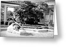 Sculpture Getty Villa Black White  Greeting Card