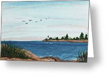 Seagulls Over Lighthouse Cove Greeting Card