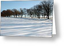 Shadows In The Snow Greeting Card