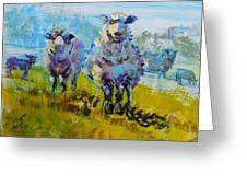 Sheep And Lambs In Bright Sunshine Greeting Card