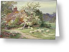 Sheep Outside A Cottage In Springtime Greeting Card